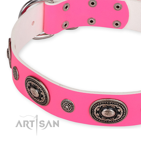 Natural genuine leather dog collar with unusual strong studs