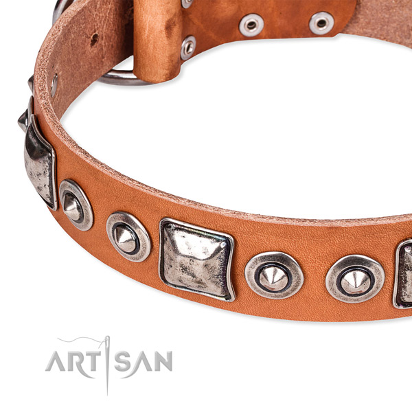 Soft to touch genuine leather dog collar crafted for your lovely doggie