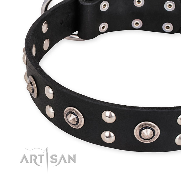 Full grain natural leather collar with reliable D-ring for your handsome doggie