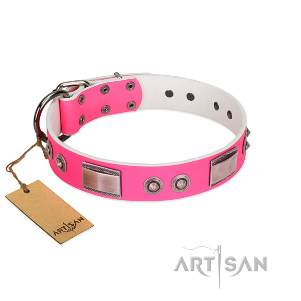 Easy wearing full grain leather collar with studs for your canine