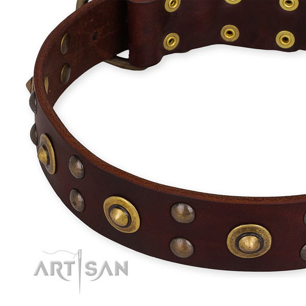 Full grain leather collar with rust-proof traditional buckle for your attractive canine
