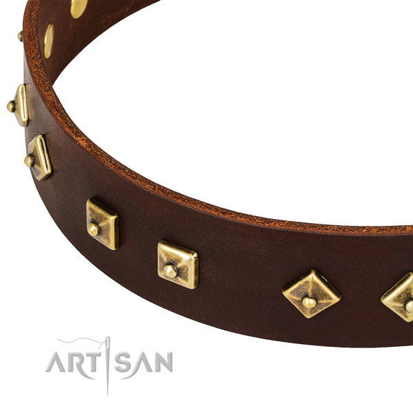 Top notch leather collar for your lovely dog