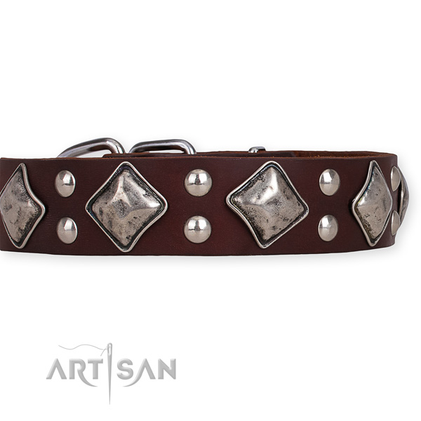 Leather dog collar with fashionable strong decorations