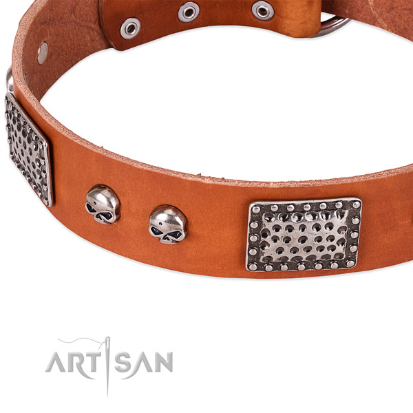Reliable traditional buckle on leather dog collar for your dog