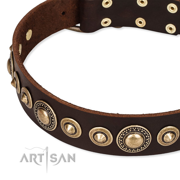 Best quality natural genuine leather dog collar handcrafted for your handsome pet