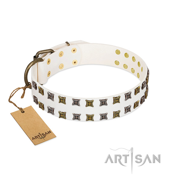 Quality full grain natural leather dog collar with adornments for your doggie