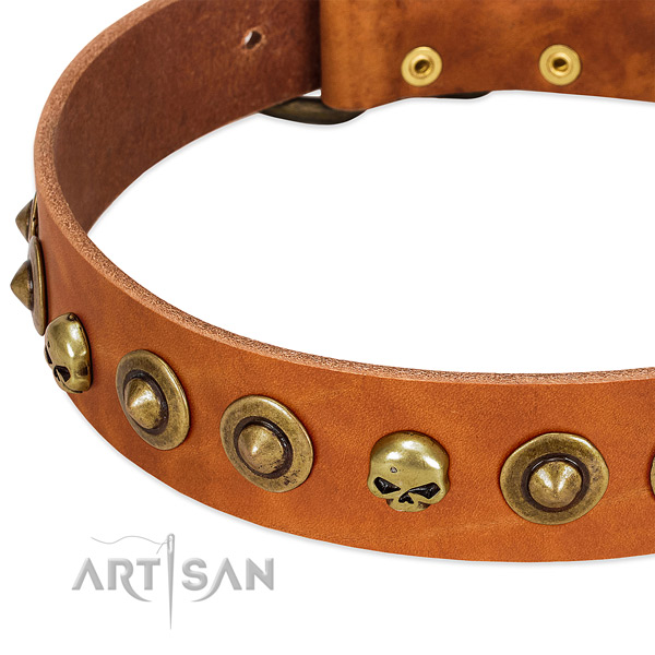 Amazing decorations on leather collar for your doggie