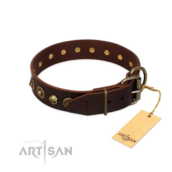 Natural leather collar with extraordinary decorations for your four-legged friend