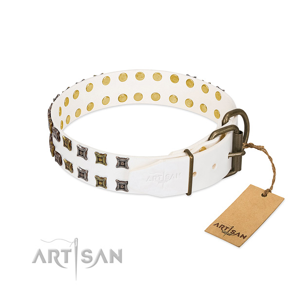 Leather collar with trendy decorations for your doggie