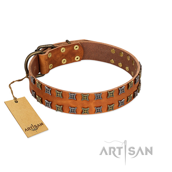 Soft to touch leather dog collar with adornments for your pet