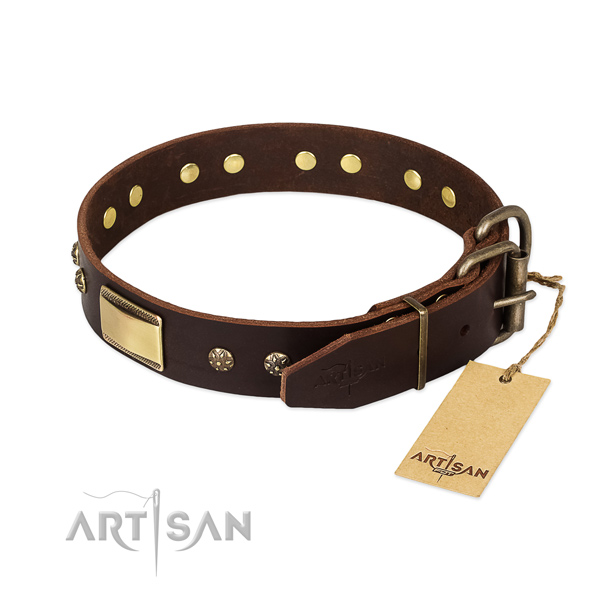 Remarkable genuine leather collar for your dog