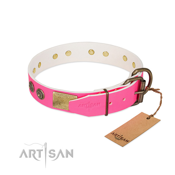 Reliable traditional buckle on full grain genuine leather collar for stylish walking your dog