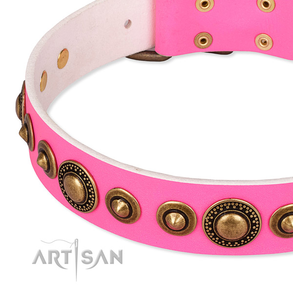 High quality full grain genuine leather dog collar created for your attractive pet