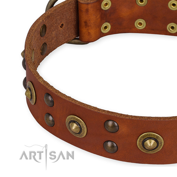 Genuine leather collar with reliable D-ring for your handsome pet
