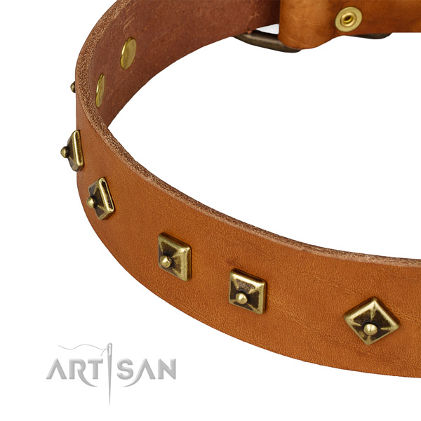 Exquisite natural leather collar for your impressive dog