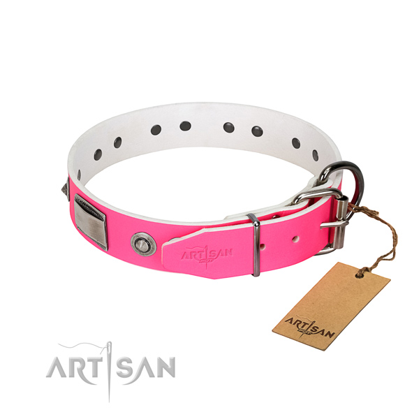 Stylish natural leather collar with embellishments for your dog