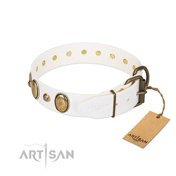 Fancy walking full grain leather dog collar