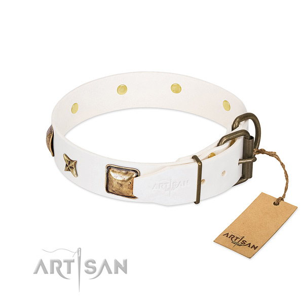Full grain leather dog collar with strong D-ring and studs