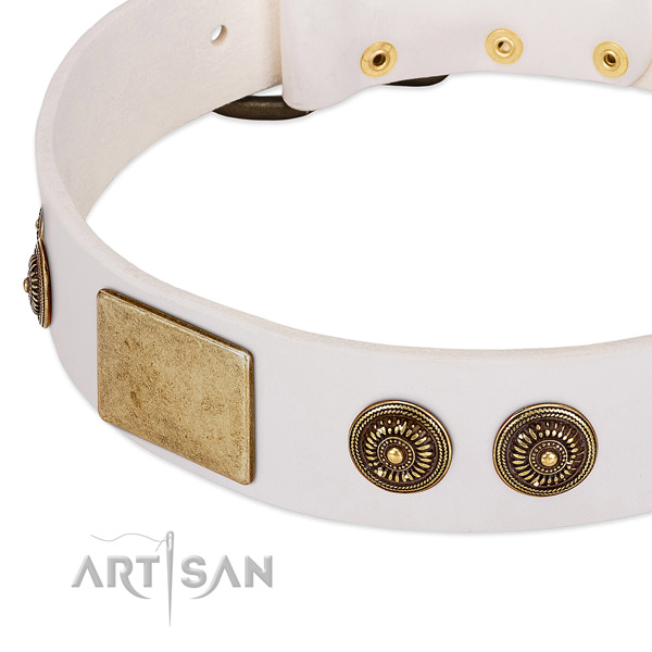 Studded dog collar made for your attractive canine
