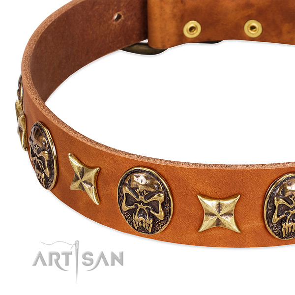 Strong hardware on full grain natural leather dog collar for your four-legged friend