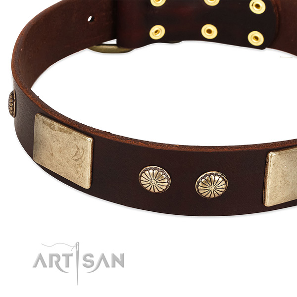 Reliable studs on full grain natural leather dog collar for your pet