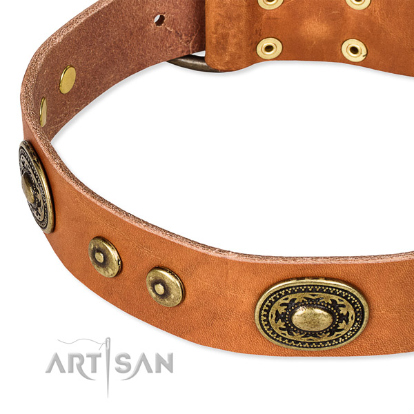 Natural genuine leather dog collar made of quality material with adornments