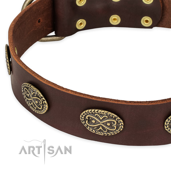 Adorned full grain natural leather collar for your handsome canine