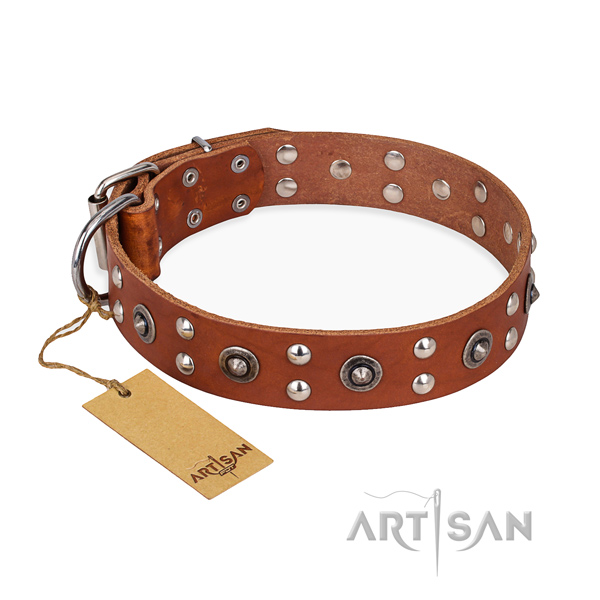 Fancy walking unique dog collar with rust resistant traditional buckle
