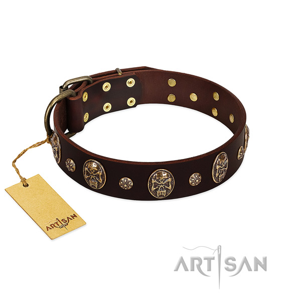 Stunning full grain natural leather collar for your doggie