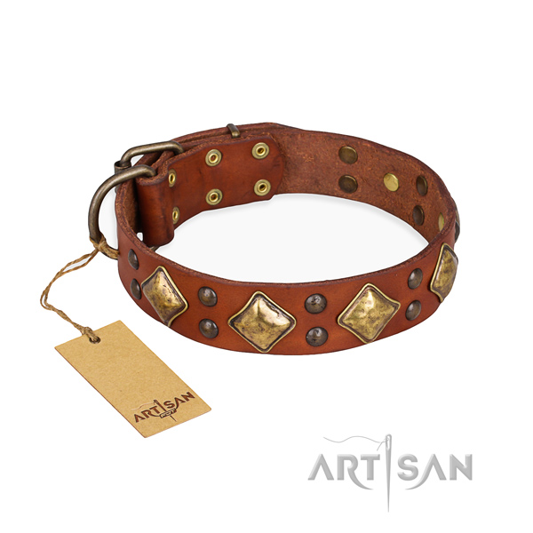 Easy wearing top notch dog collar with corrosion proof buckle