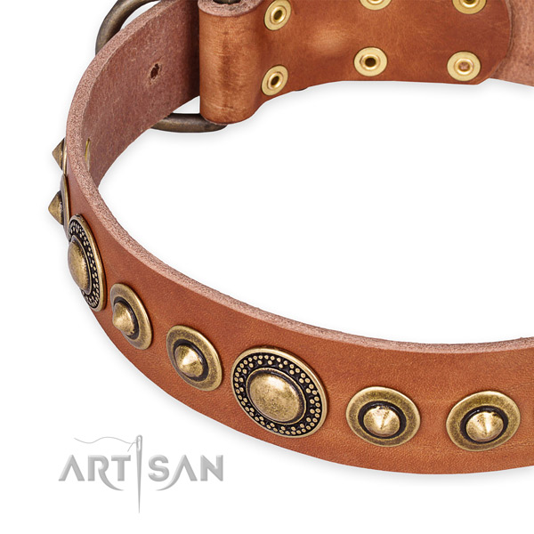 Soft to touch full grain genuine leather dog collar created for your impressive canine