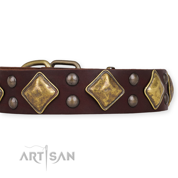 Natural leather dog collar with stylish design rust-proof embellishments