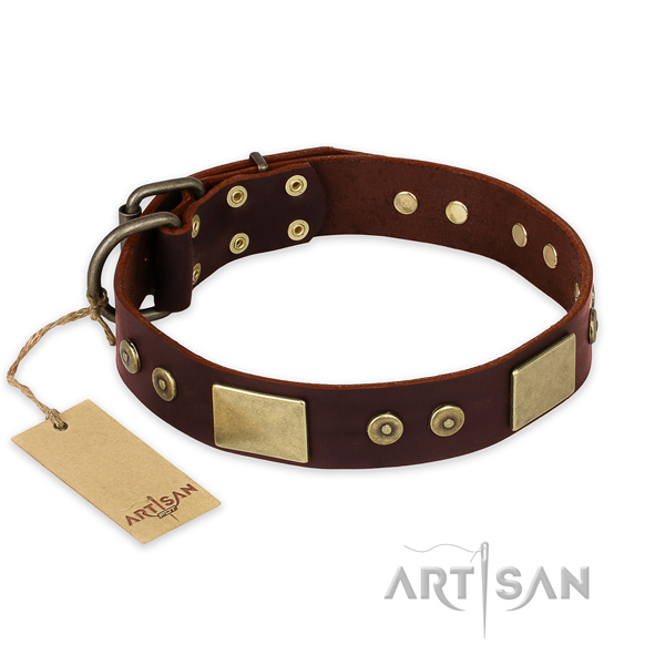 Amazing full grain leather dog collar for handy use