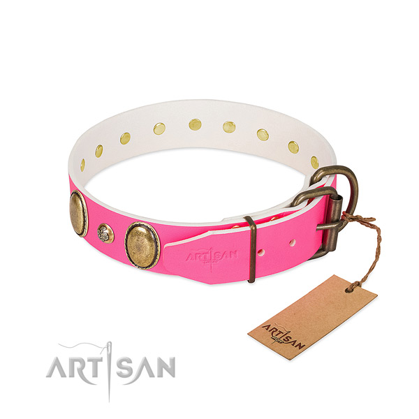 Stylish walking best quality full grain natural leather dog collar