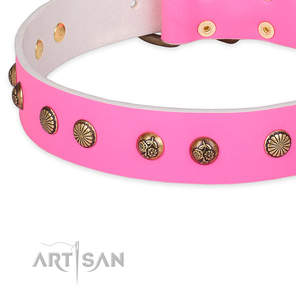 Inimitable leather collar for your beautiful canine