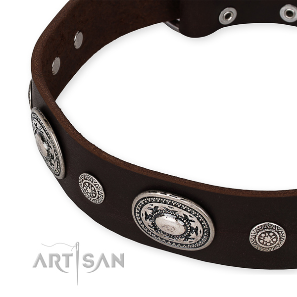 Best quality full grain leather dog collar crafted for your stylish doggie