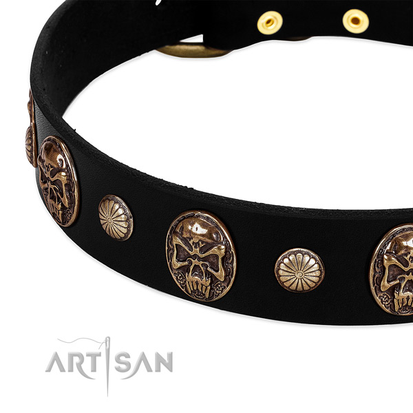 Leather dog collar with designer embellishments