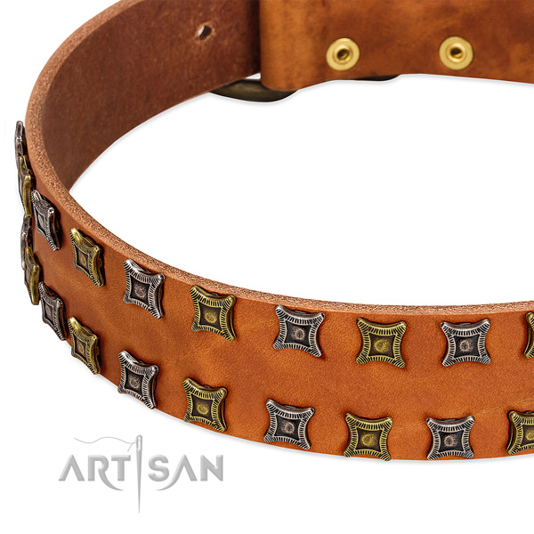 Quality full grain genuine leather dog collar for your handsome dog