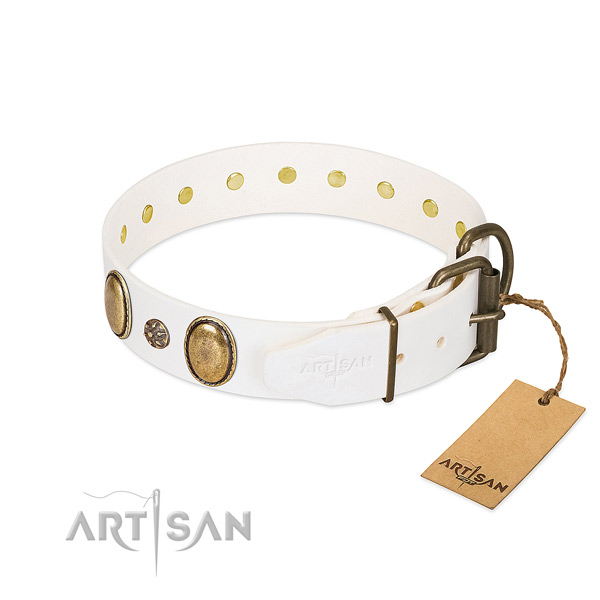 Fancy walking gentle to touch leather dog collar
