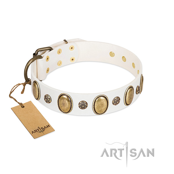 Daily use flexible genuine leather dog collar with embellishments