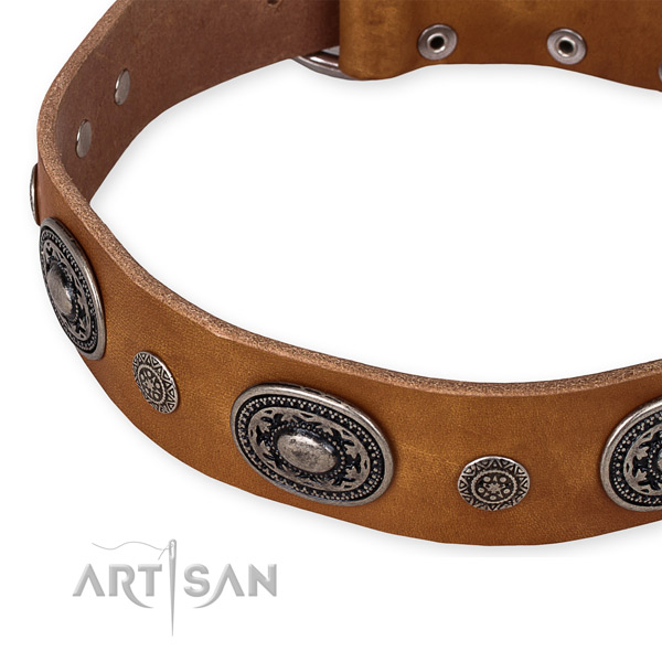 Strong genuine leather dog collar created for your impressive pet
