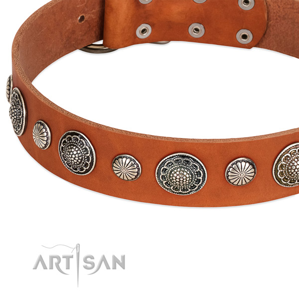 Full grain genuine leather collar with corrosion proof traditional buckle for your lovely canine