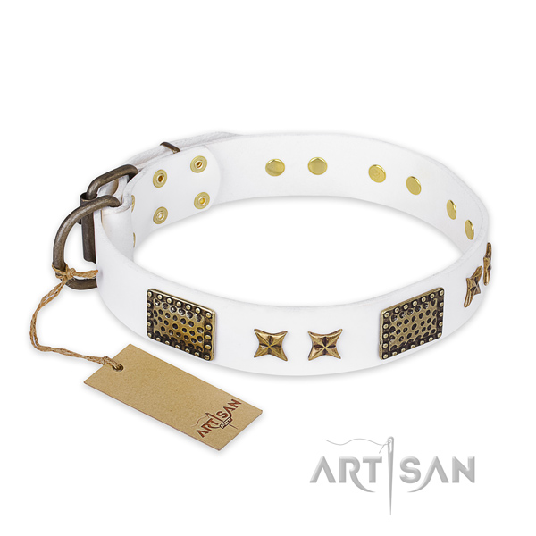 Decorated full grain leather dog collar with corrosion proof D-ring