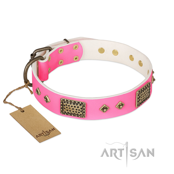 Adjustable natural genuine leather dog collar for stylish walking your dog
