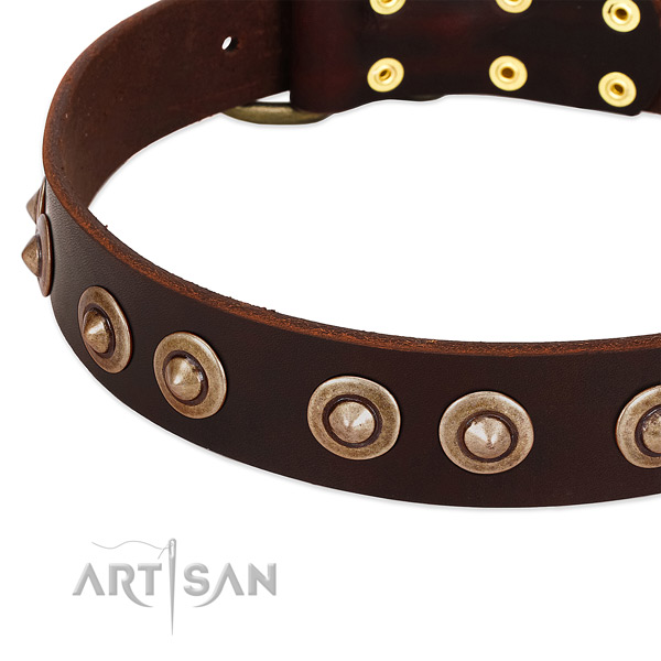 Durable embellishments on leather dog collar for your dog