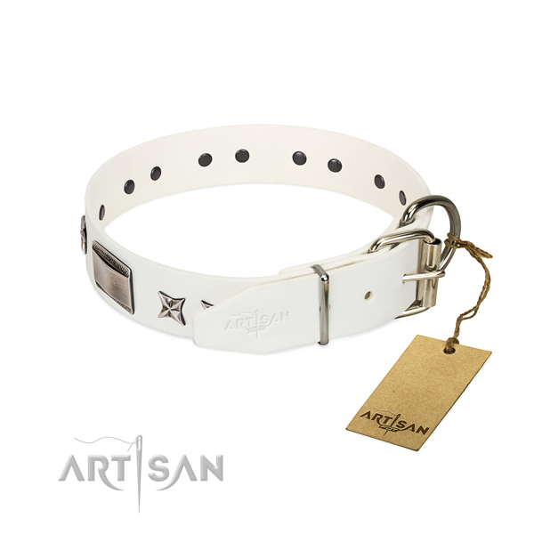 Handmade collar of full grain genuine leather for your attractive canine