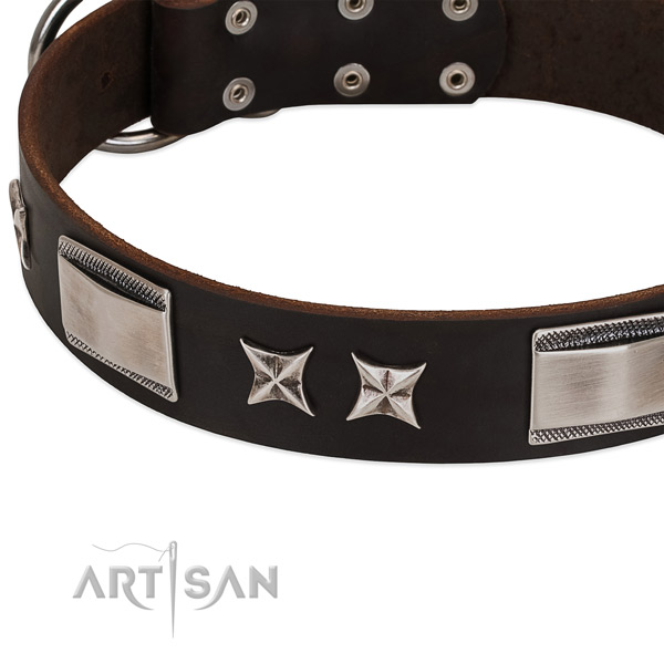 Quality genuine leather dog collar with rust-proof hardware