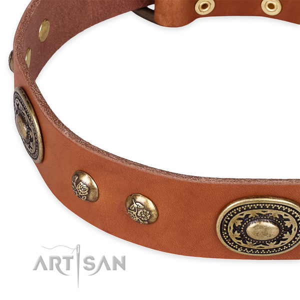 Easy wearing full grain leather collar for your lovely dog
