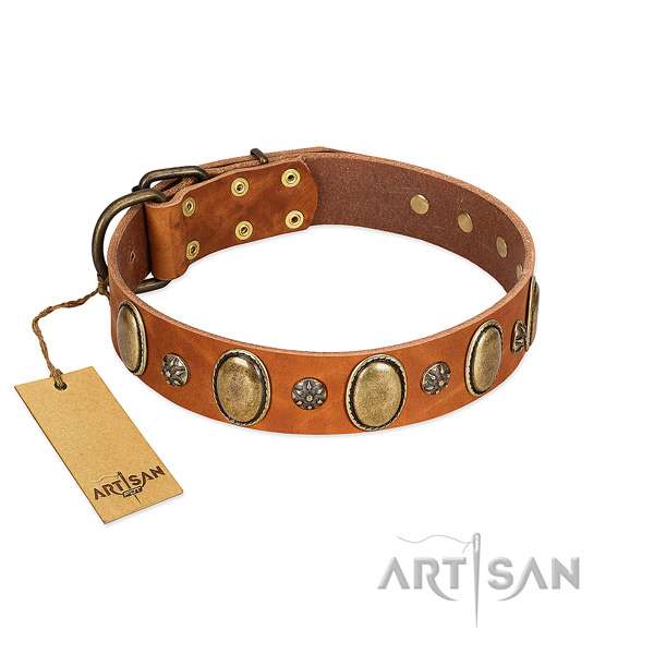 Fancy walking flexible full grain natural leather dog collar with studs