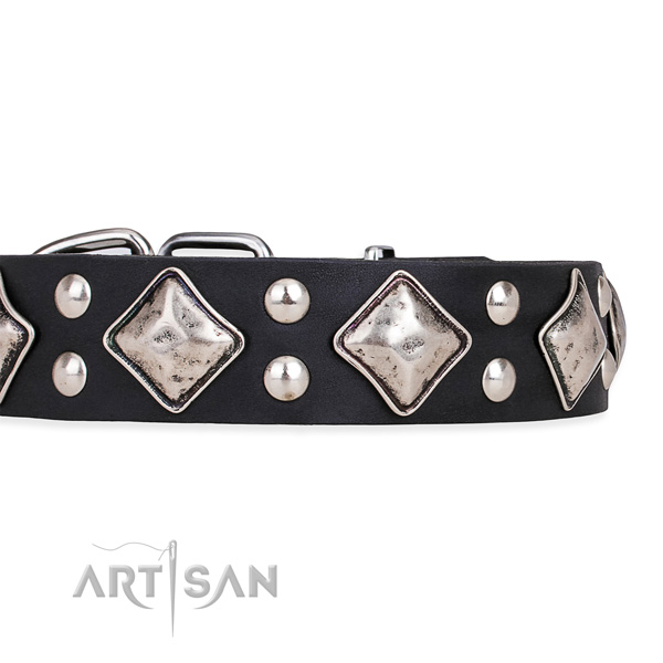 Full grain genuine leather dog collar with impressive strong studs